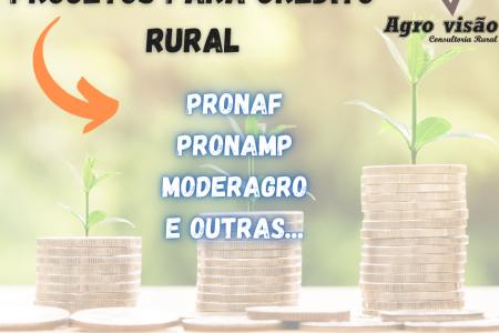 AGRO VISÃO CONSULTORIA RURAL LTDA.
